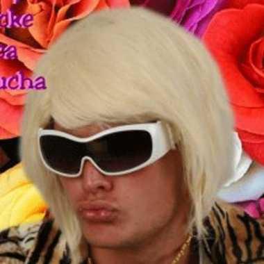 Blonde bobline herenpruik D.J. carnaval