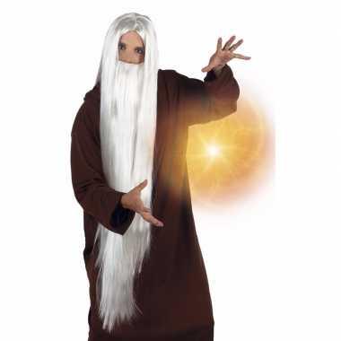 Feest witte neptunus/gandalf pruik baard volwassenen carnaval
