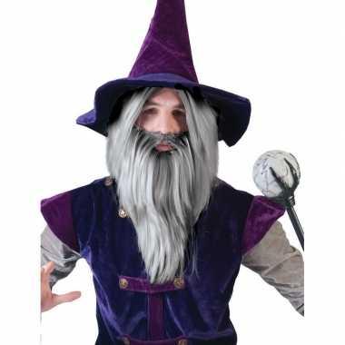 Grijze tovenaars set pruik baard carnaval