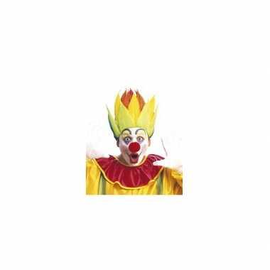 Meerkleurige clownspruik carnaval